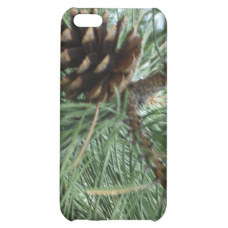 The Pine Cone iPhone 5C Cover