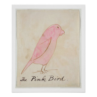 The Pink Bird, from 'Sixteen Drawings of Comic Bir Poster
