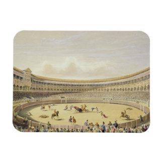 The Plaza de Toros of Madrid, 1865 (colour litho) Rectangle Magnet