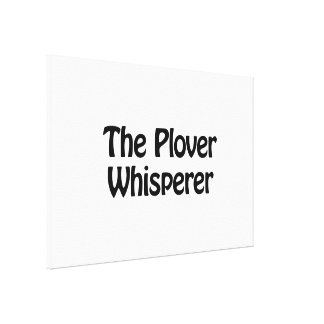 the plover whisperer stretched canvas prints