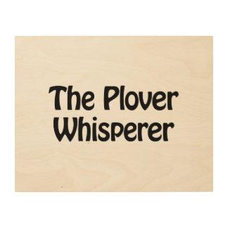 the plover whisperer wood wall art