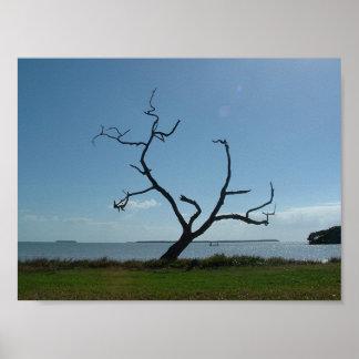 The Poet Tree Print