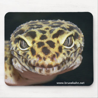 The Politician Mouse Pad
