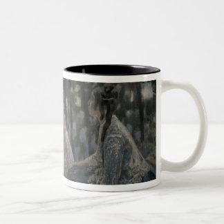 The Pond, 1902 Two-Tone Coffee Mug