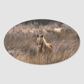 The Pony Oval Stickers