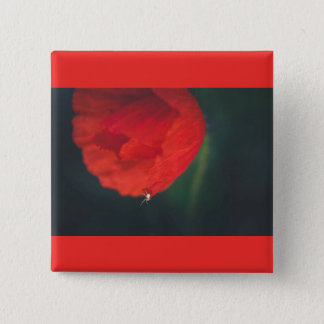 The poppy and the spider 15 cm square badge