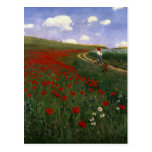 The Poppy Field Post Cards