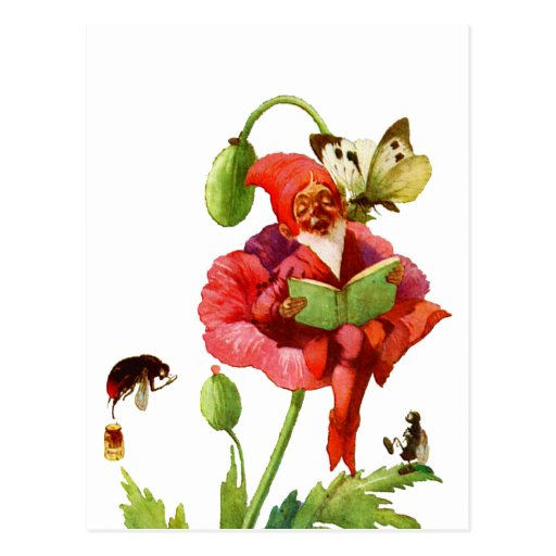 The Poppy Gnome Postcard