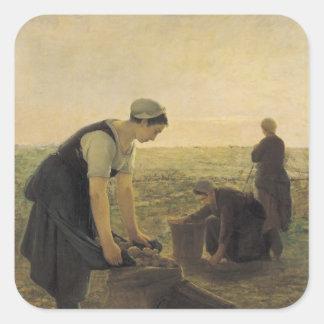 The Potato Harvest Sticker