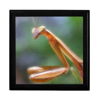 The Praying Mantis Jewelry Boxes
