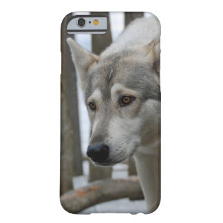 The Prowling Wolf Dog Barely There iPhone 6 Case