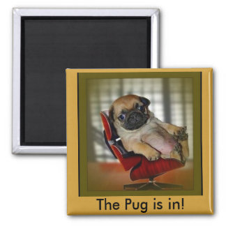 The Pug is in! Magnet