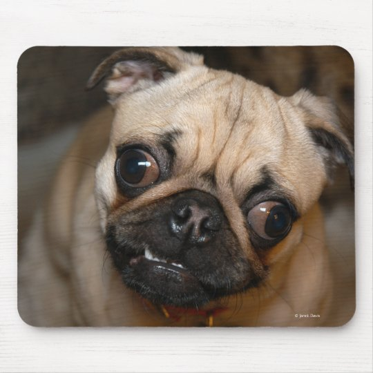 The Pug Mouse Mat