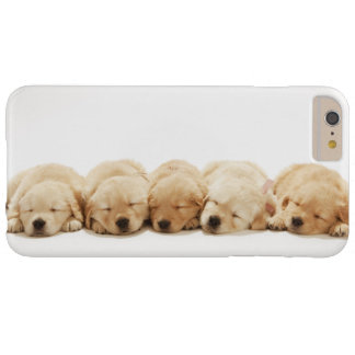 The puppies of the golden retriever barely there iPhone 6 plus case