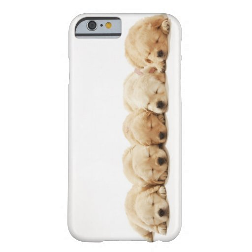 The puppies of the golden retriever iPhone 6 case