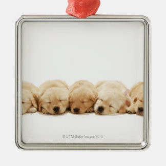 The puppies of the Golden Retriever Christmas Ornament