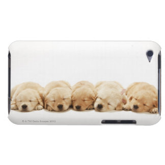 The puppies of the golden retriever iPod touch covers