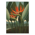 'The Queen (Bird of Paradise)' - Temple of Flora Note Card
