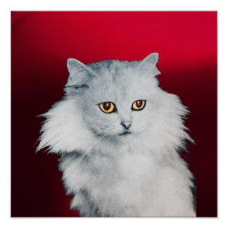 THE QUEEN OF WHITE CATS ,Red Burgundy Poster
