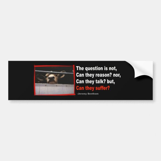 The question is not, can they reason?... bumper sticker