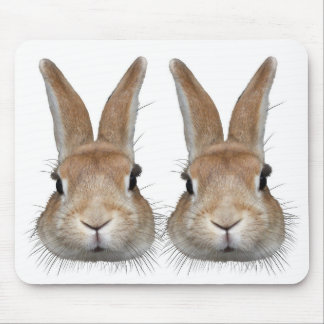 The rabbit which has the dense mustache mouse pad