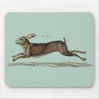 The Racing Hare at Easter Mouse Mat