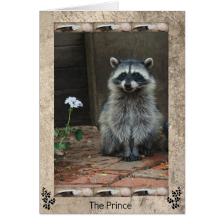 The Racoon Prince Card