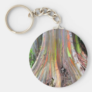 The Rainbow Eucalyptus Tree Products Basic Round Button Key Ring