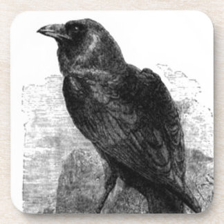 ThE RaVEN Beverage Coasters