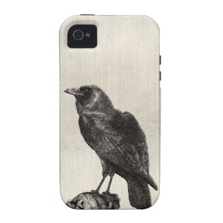 The Raven Gothic Horror Style Case for Halloween iPhone 4 Covers
