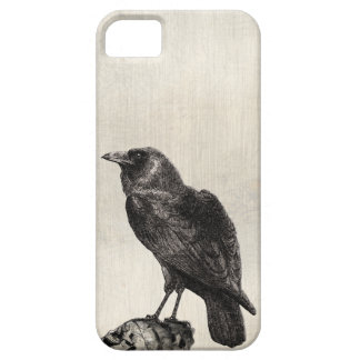 The Raven Gothic Horror Style Case for Halloween iPhone 5 Cases
