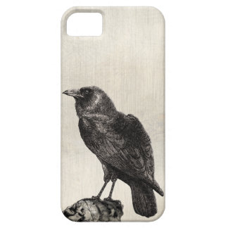 The Raven Gothic Horror Style Case for Halloween iPhone 5 Covers