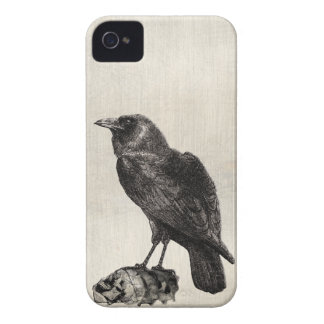 The Raven Gothic Horror Style Case for Halloween iPhone 4 Cover