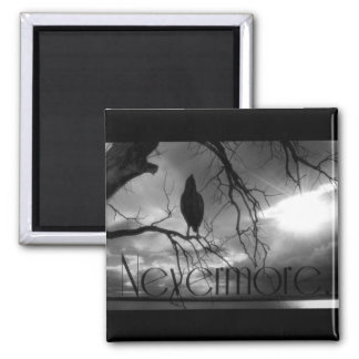 The Raven - Nevermore Sunbeams & Tree B&W Magnet