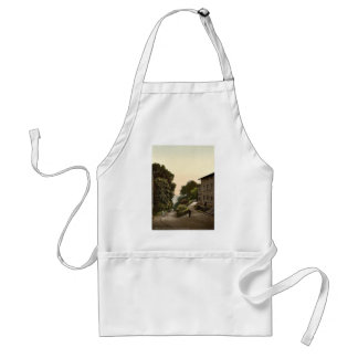 The Ravine, Isle of Rugen, Germany rare Photochrom Adult Apron