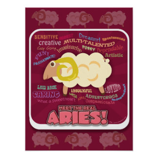 The Real Aries Poster