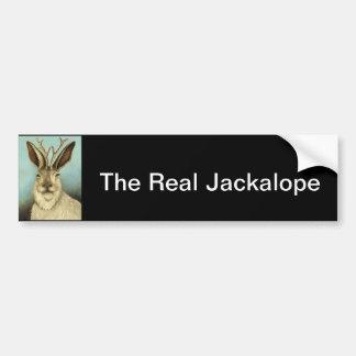The Real Jackalope Bumper Sticker