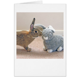 The Real Rabbit Greeting Card