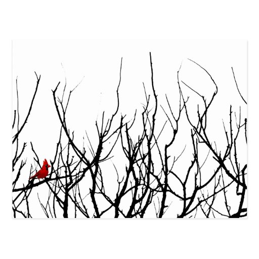 The Red Bird by Leslie Peppers Post Card