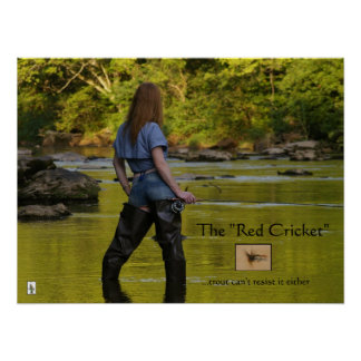 """The """"Red Cricket"""" nymph Poster"""