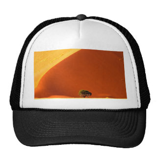 The red dunes of Sossusvlei Trucker Hat