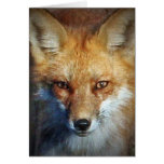 The Red Fox Gifts & Greetings Greeting Card