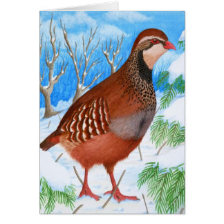 The Red-Legged Partridge Card