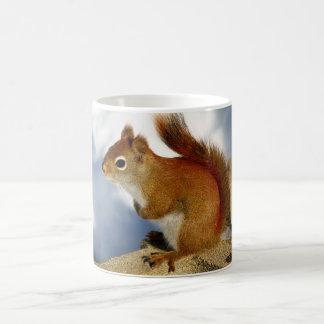 The Red Squirrel Who Stuck Around Basic White Mug