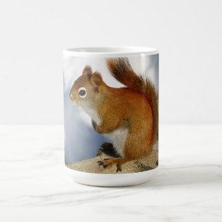 The Red Squirrel Who Stuck Around Classic White Coffee Mug