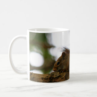 The Red Squirrel Who Tried To Hide Basic White Mug
