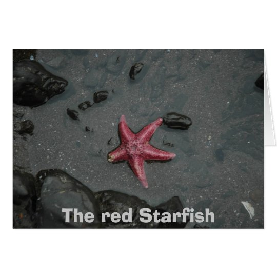 The red Starfish Card
