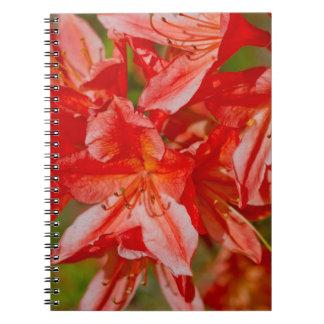 The red wild flower spiral notebooks