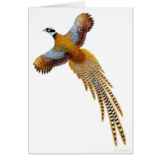 The Reeves Pheasant Card