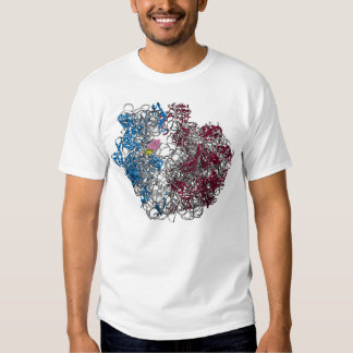 THE RIBOSOME - LARGE, HIGHER RESOLUTION TSHIRTS